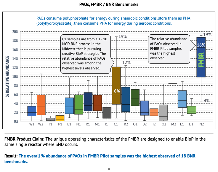 PAO BNR wastewater benchmarking study